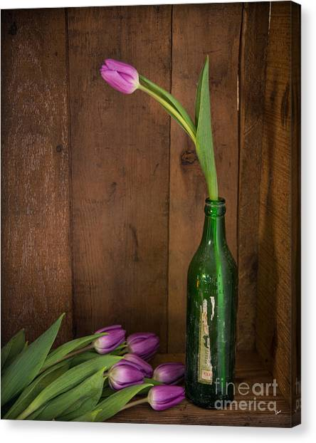 Tulips Green Bottle Canvas Print