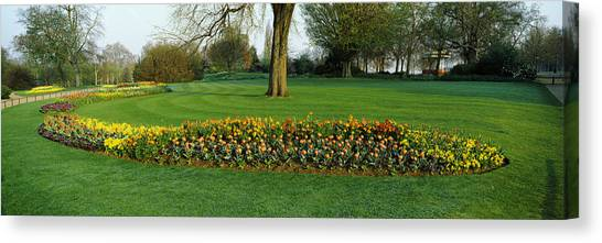 Hyde Park Canvas Print - Tulips In Hyde Park, City by Panoramic Images