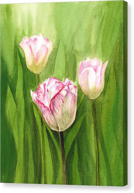 Irina Canvas Print - Tulips In The Fog by Irina Sztukowski