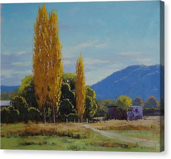 Amber Canvas Print - Tumut Farm by Graham Gercken