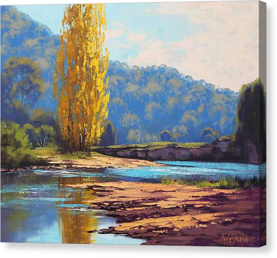 Brook Canvas Print - Tumut River Poplar by Graham Gercken