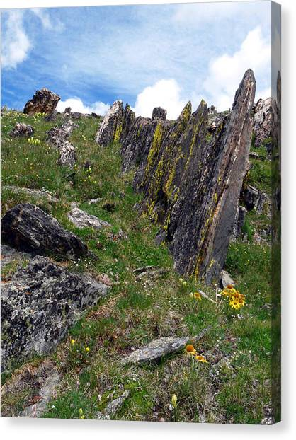 Tundra Rocks Canvas Print