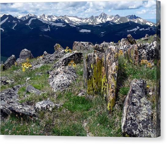 Tundra Views Canvas Print
