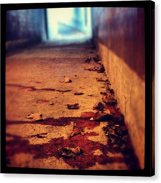 Tunnels Canvas Print - #tunnel #blood #stain #stains #stained by Jill Battaglia