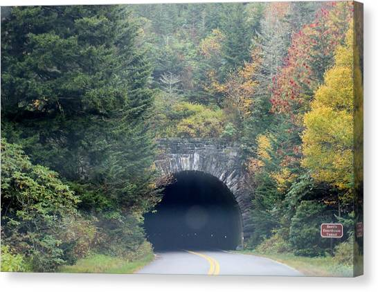 Tunnel On Parkway Canvas Print by Melony McAuley