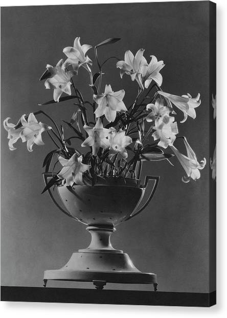 Tureen With Lilies Canvas Print