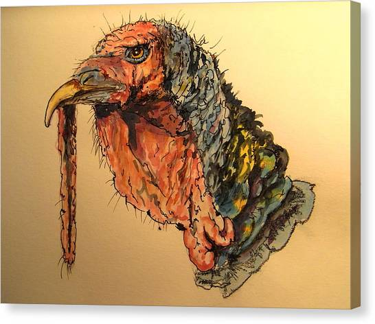 Turkeys Canvas Print - Turkey Head Bird by Juan  Bosco