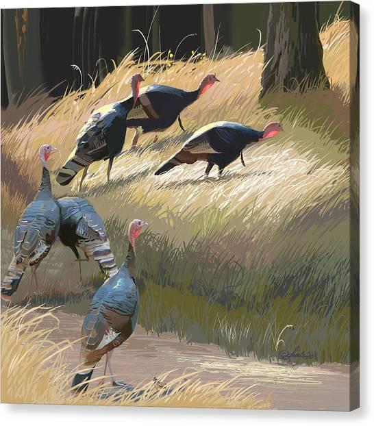 Turkeys In The Fall Sun Canvas Print