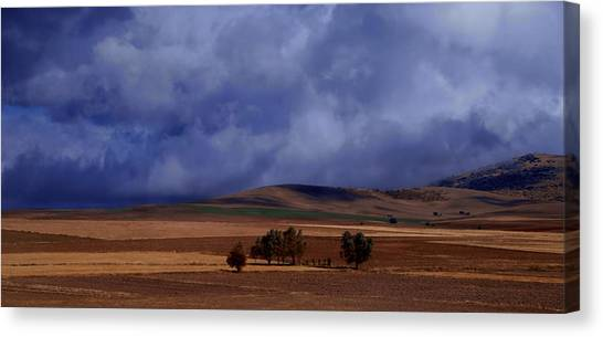 Turkish Landscape From Antalya To Konya  Canvas Print by Jacqueline M Lewis