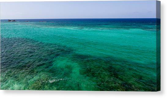 Coral Reefs Canvas Print - Turks Turquoise by Chad Dutson