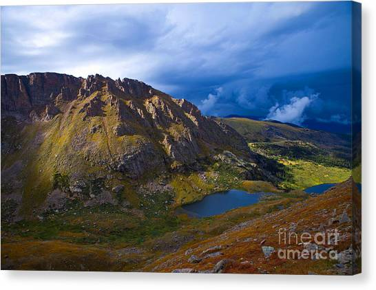 Turning To Gold Canvas Print