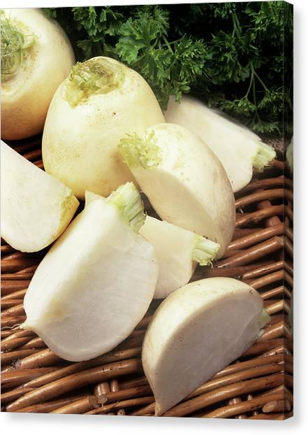 Snowball Canvas Print - Turnips by Ray Lacey/science Photo Library