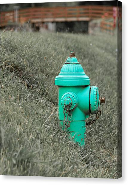 Fire Ball Canvas Print - Turquiose Hydrant by Earl Ball