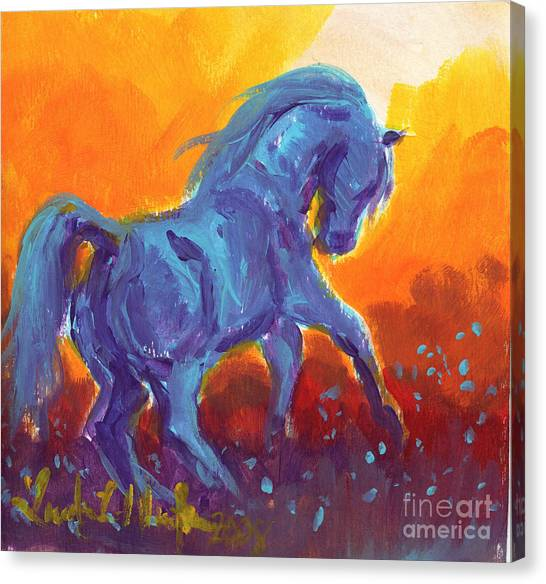 Turquois Stallion Canvas Print