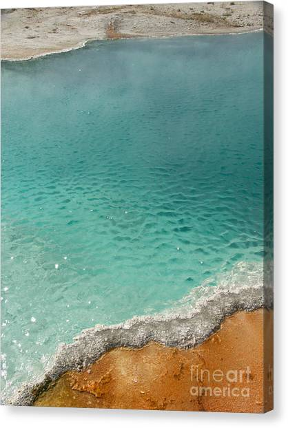 Turquoise Jewels Canvas Print