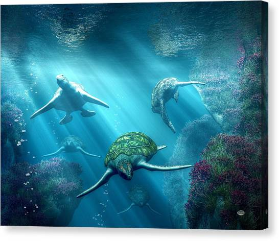 Turtle Alley Canvas Print