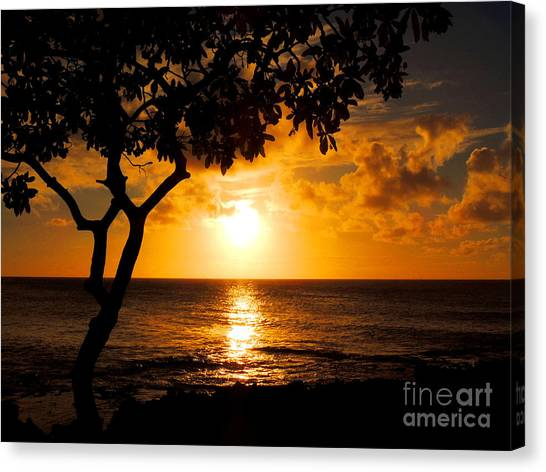 Turtle Bay Sunset Canvas Print