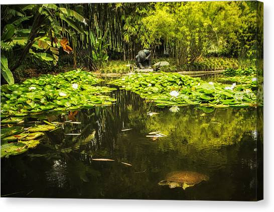 Canvas Print featuring the photograph Turtle In A Lily Pond by Belinda Greb