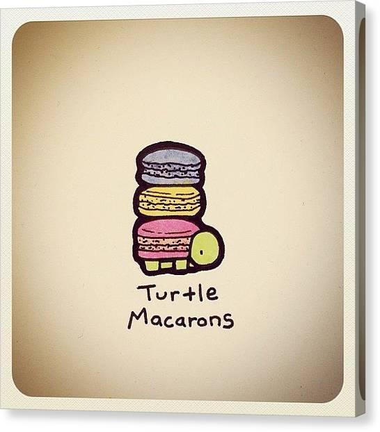Turtles Canvas Print - Turtle Macarons by Turtle Wayne