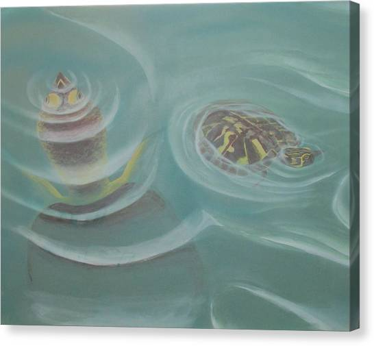 Turtle Pond I Canvas Print