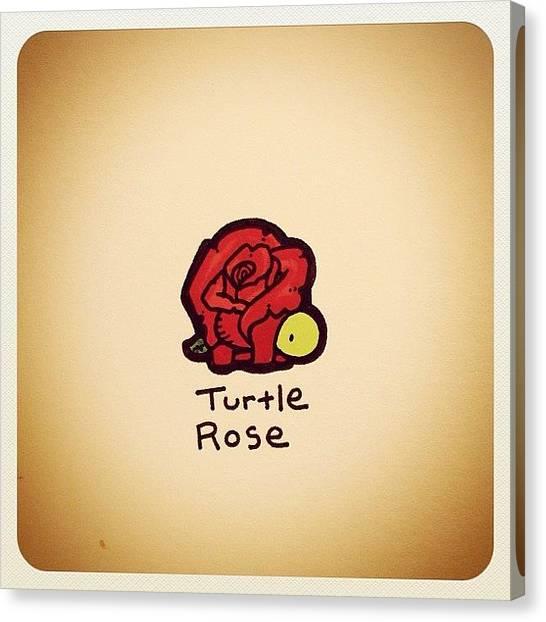 Turtles Canvas Print - Turtle Rose by Turtle Wayne