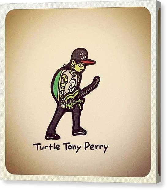 Turtles Canvas Print - Turtle Tony Perry @tonyperry by Turtle Wayne
