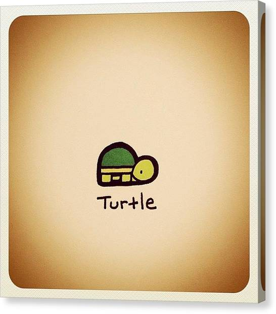 Reptiles Canvas Print - Turtle by Turtle Wayne