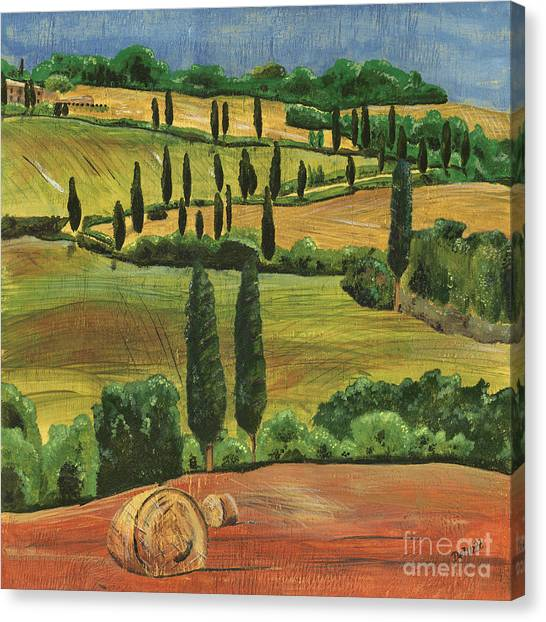 Cypress Canvas Print - Tuscan Dream 1 by Debbie DeWitt