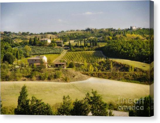 Tuscan Landscape Canvas Print by Jim  Calarese