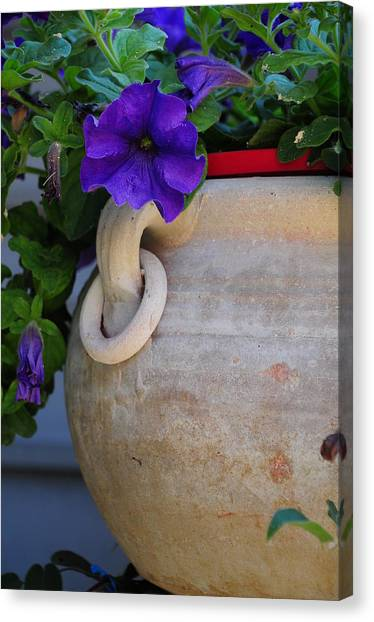Tuscan Pot Canvas Print