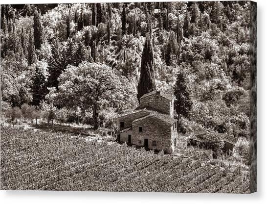Tuscan Vinyard Canvas Print