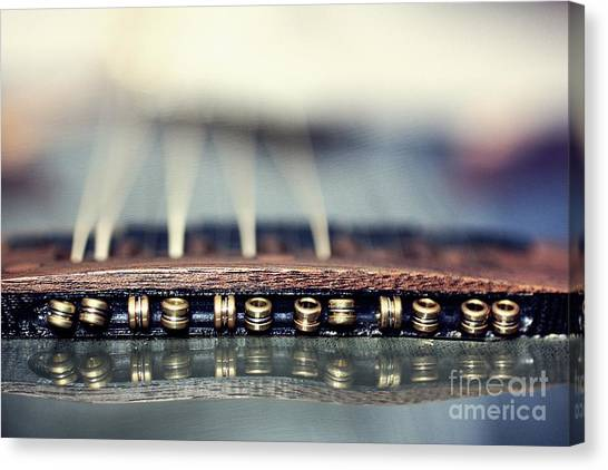 Guitar Picks Canvas Print - Twelve String by Patrick Rodio