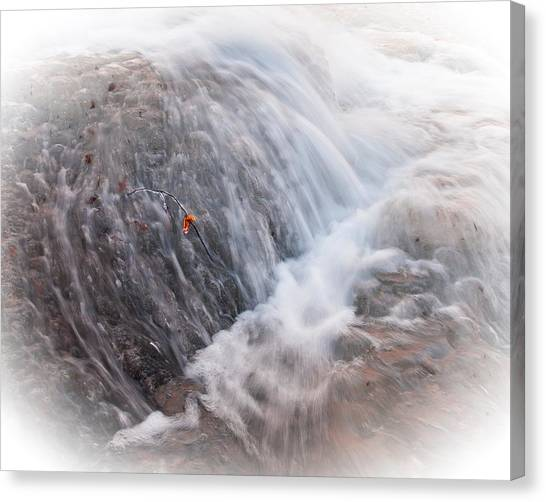 Twig Vs Ice And Water Canvas Print