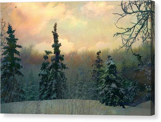 Twilight In The Forest Canvas Print