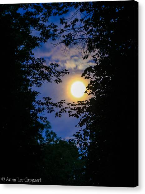 Twilight Moon Canvas Print by Anna-Lee Cappaert