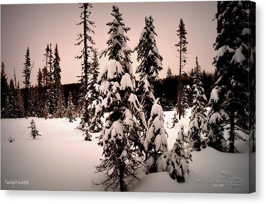 Twilightwinter Canvas Print