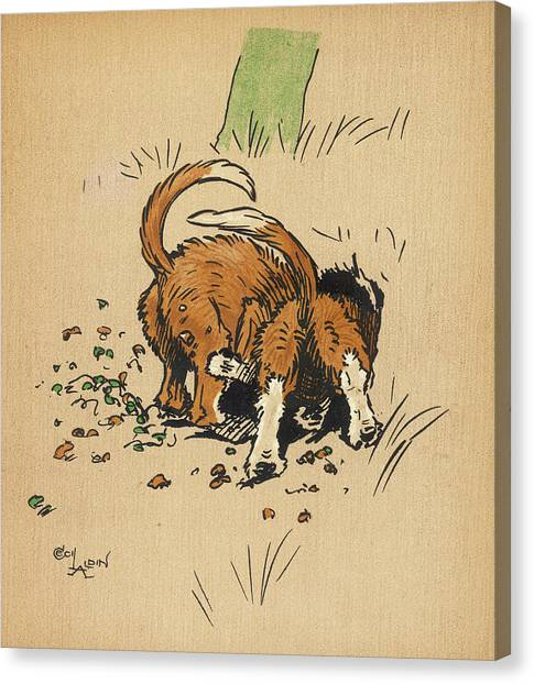 Twin Puppies, Snip And Snap,  Try Canvas Print by Mary Evans Picture Library