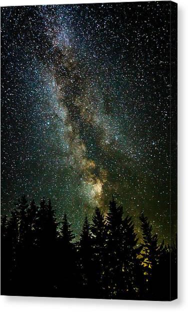 Twinkle Twinkle A Million Stars  Canvas Print