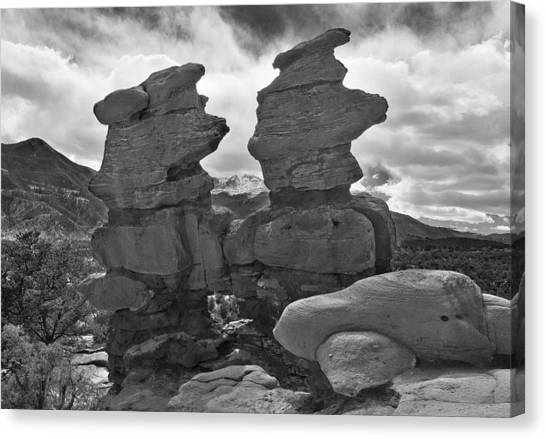 Canvas Print featuring the photograph Twin Toadstools by Mae Wertz