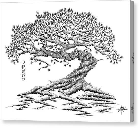 Ballpoint Pens Canvas Print - Twisted Gnarled Black Pine by Robert Fenwick May Jr