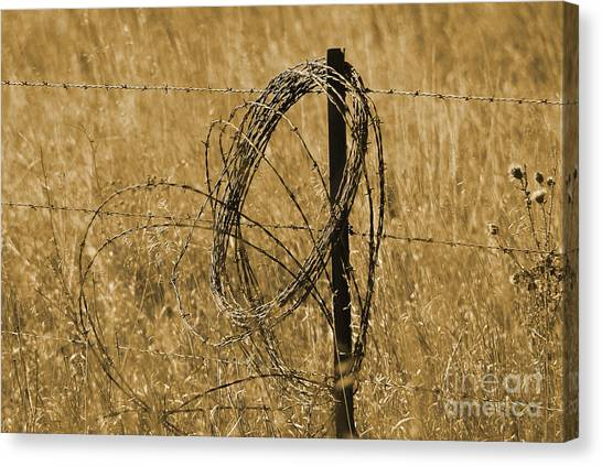 Twisted - Sepia Canvas Print