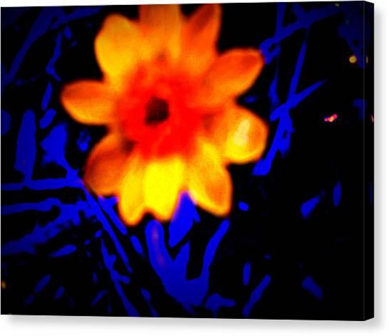 Twisted Wild Flower Canvas Print