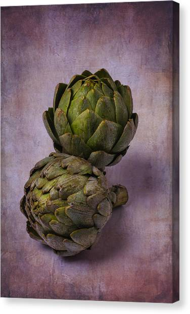 Artichoke Canvas Print - Two Artichokes by Garry Gay