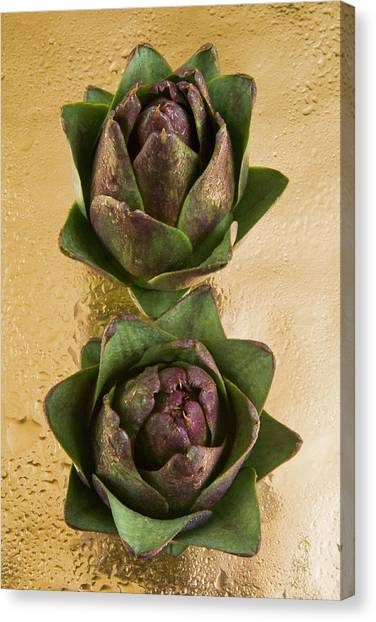 Artichoke Canvas Print - Two Artichokes by Nico Tondini
