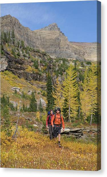 Backpacks Canvas Print - Two Backpackers Make There Way To Camp by Heath Korvola