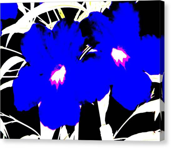 Two Blue Jack Flowers Canvas Print