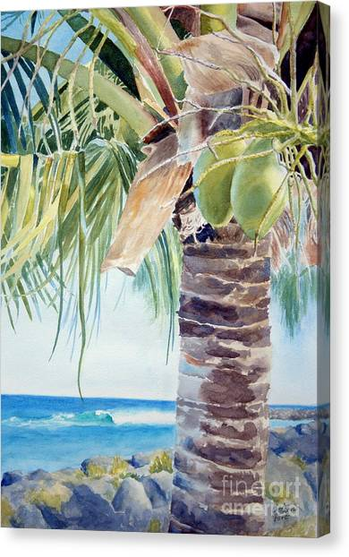 Coconut Canvas Print - two coconuts -SOLD by Lisa Pope