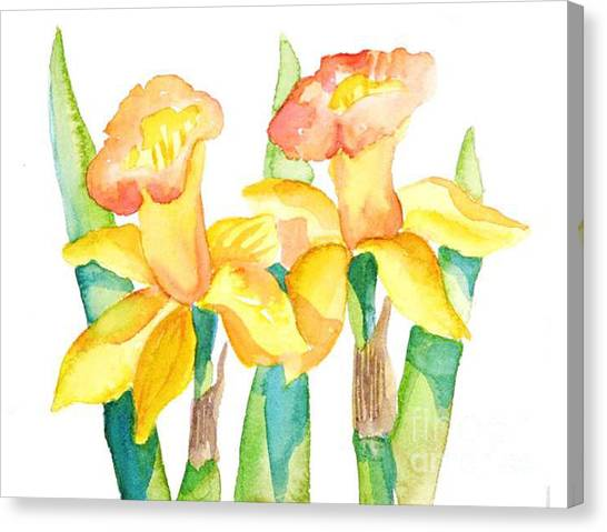 Two Daffodils Canvas Print