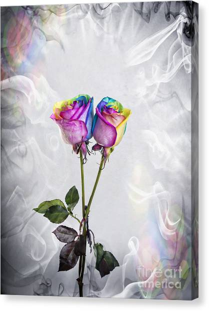 Two Entwined Kaleidoscope Roses Canvas Print by Linda Matlow