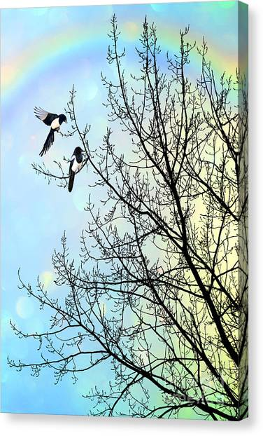 Magpies Canvas Print - Two For Joy by John Edwards